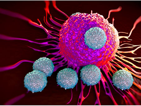 Destruction of T cells in Autoimmune diseases