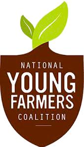 NYFC logo no white (1).png