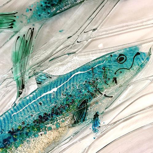 Swimming Mackerel Wall Art
