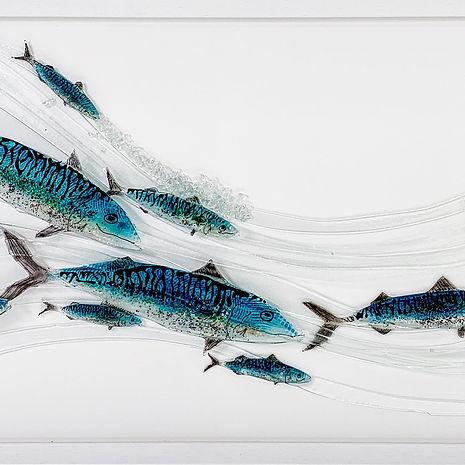 MadeInB-Swimming-Mackeral-shoal.jpg