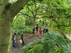 bioblitz.trees.jpg