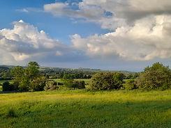 ViewtoAlmcliffeovertheIrishfields.jpg
