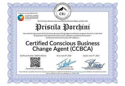 528471-991513 - Priscila Porchini - Cons