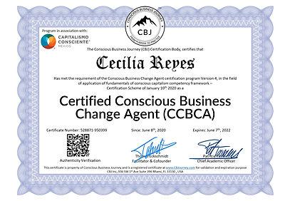 528871-950399 - Cecilia Reyes - Consciou