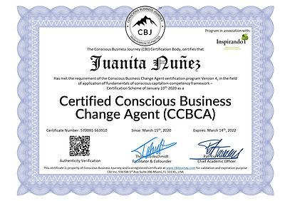 Conscious Business Journey Certificado C