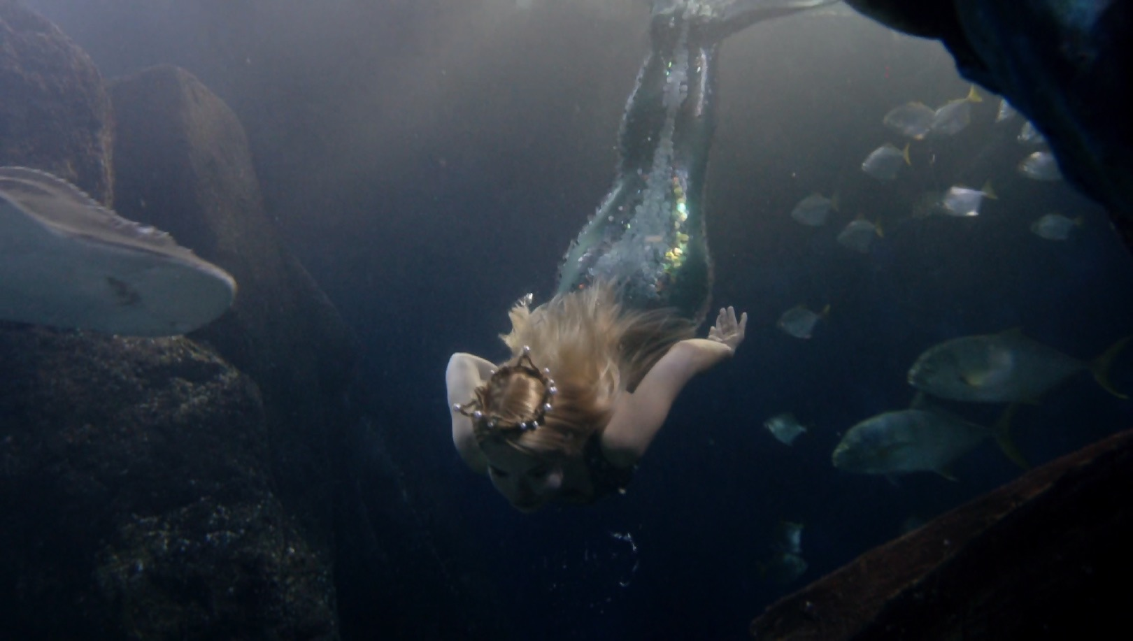 1_Meerjungfrau Zoe_unterwasser