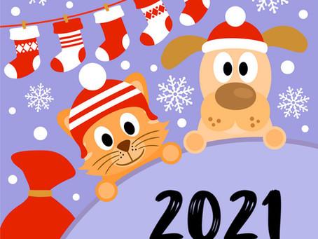 Посещение приюта в январе 2021г.