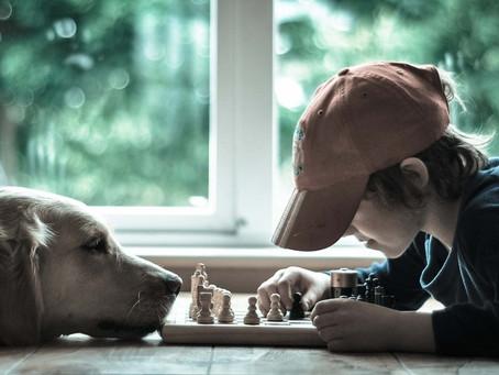 Благотворительный детско-юношеский шахматный турнир