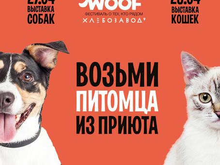 Наши подопечные на фестивале WOOF!