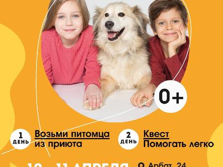 Едем на фестиваль «Собаки, которые любят»