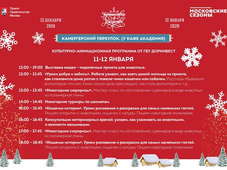 """Фестиваль """"Путешествие в Рождество"""" 11 и 12 января 2020г."""
