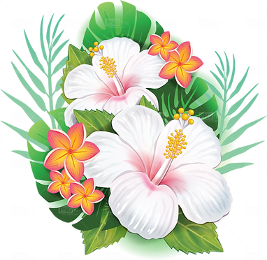 tropical-flower-png-free-download-815678