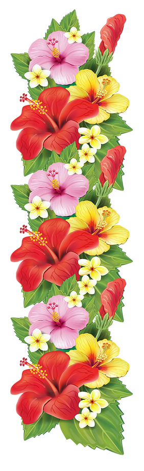 tropical-flower-border-png-8.png