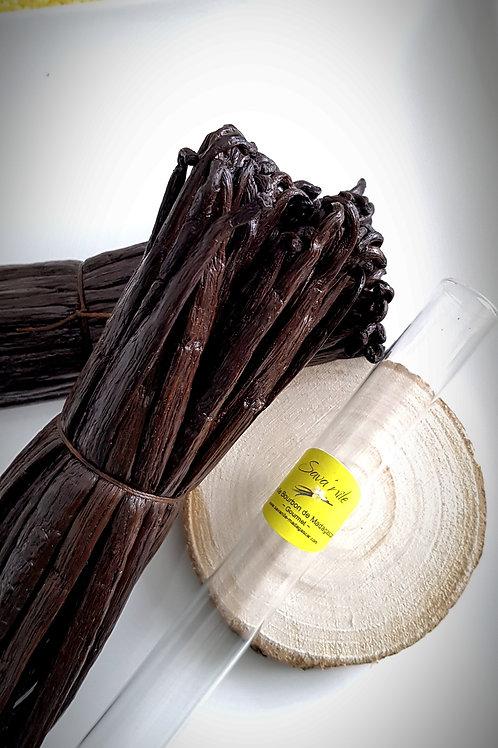 Vanille Bourbon de Madagascar - Noire Gourmet - Grandes Gousses