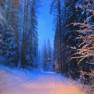 First ski day, Jan 1, 2020 - Magical by Gail White