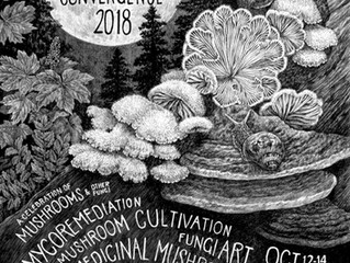 Radical Mycology Convergence 2018