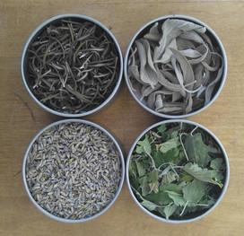 Organic Herb Set