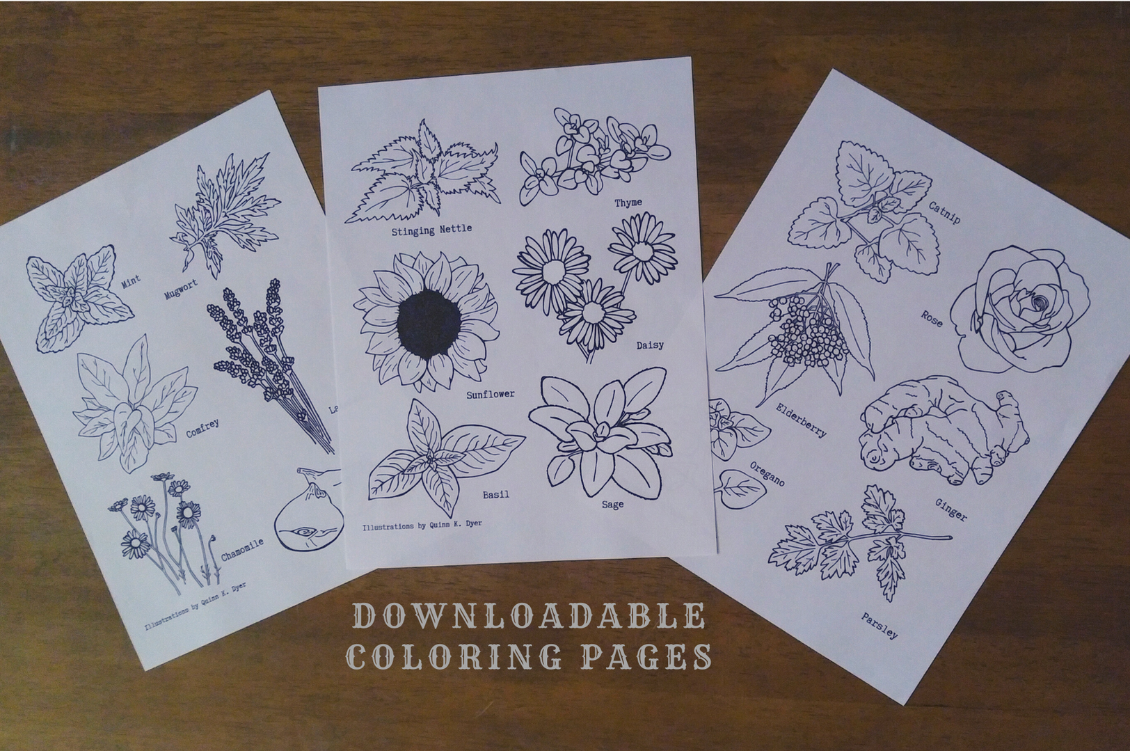 Botanical Coloring Pages