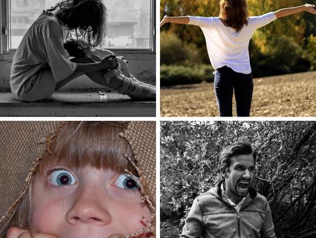 Les émotions… au fond, à quoi ça sert ?