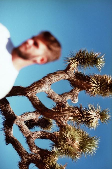 chris, joshua tree