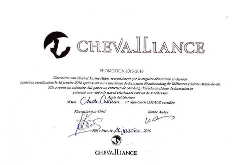 Equicoach Chevalliance 2016-page-001.jpg