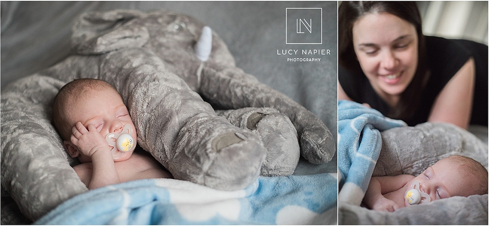 newborn baby and his elephant pillow