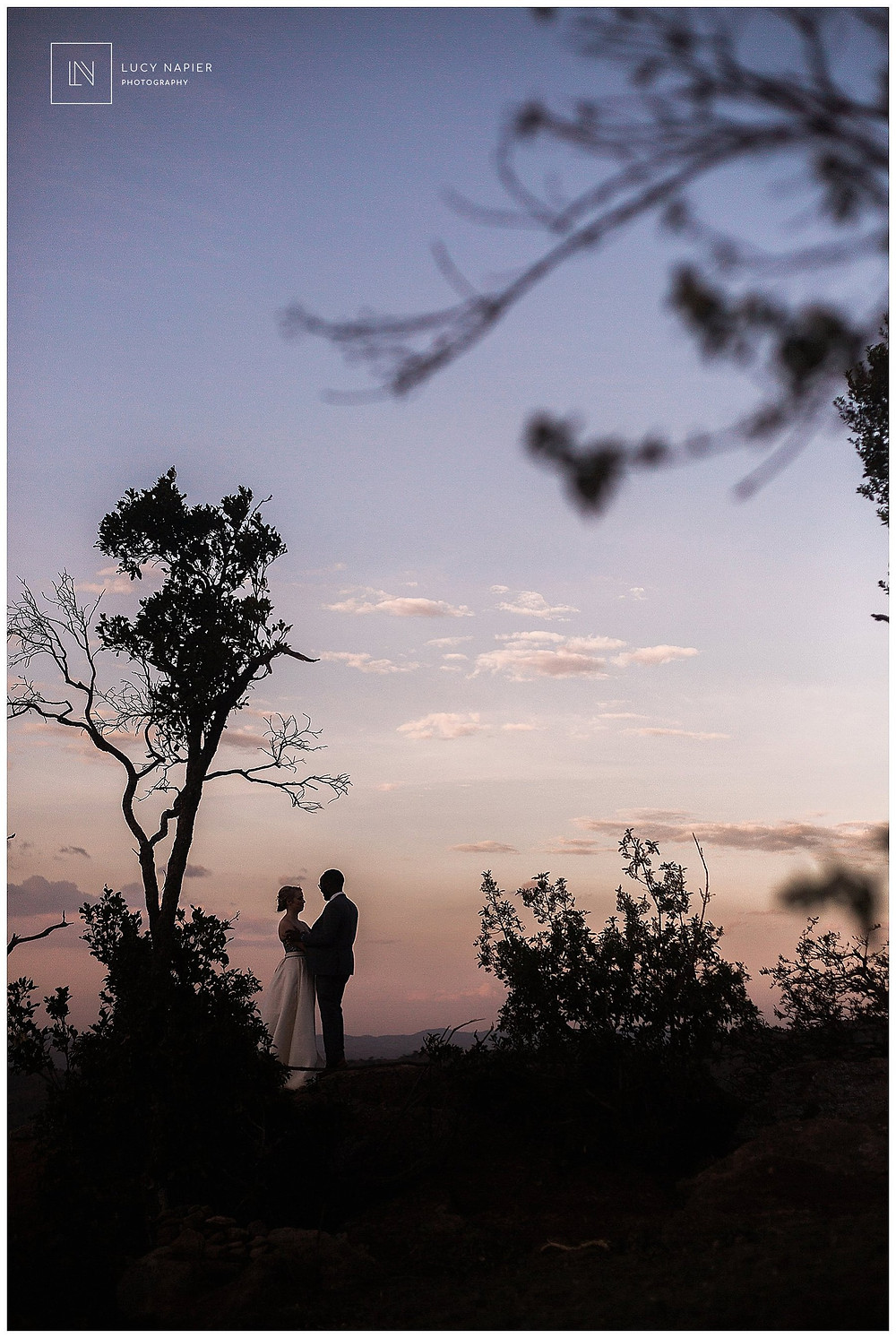 silhouetted bridal portrait