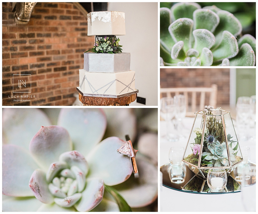 hexagonal cake with succulents in the middle geometric wedding ring