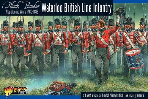 British Linien Infantriy