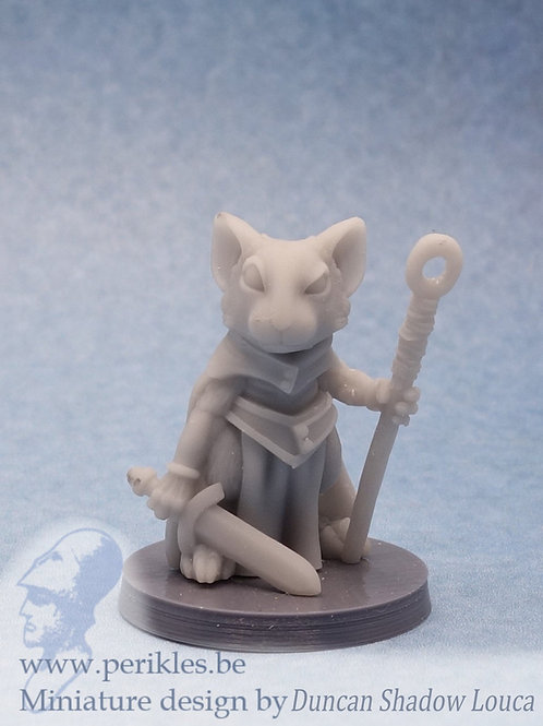 Mousling Wizard 1