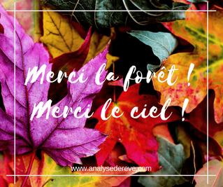 En hommage à l'automne