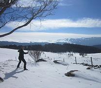 Qi Gong dans la neige en montagne