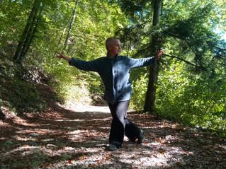 Qi Gong avec les arbres dimanche 20 octobre