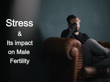 Stressors Impact on Male Fertility.
