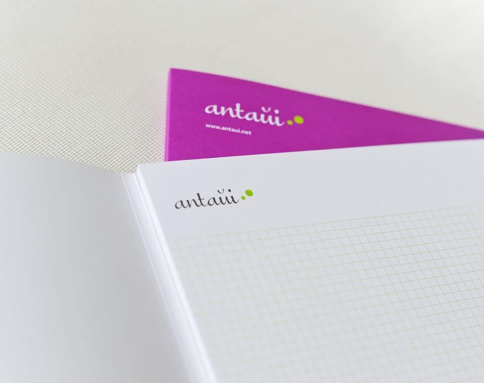 antaui GmbH, Blöcke