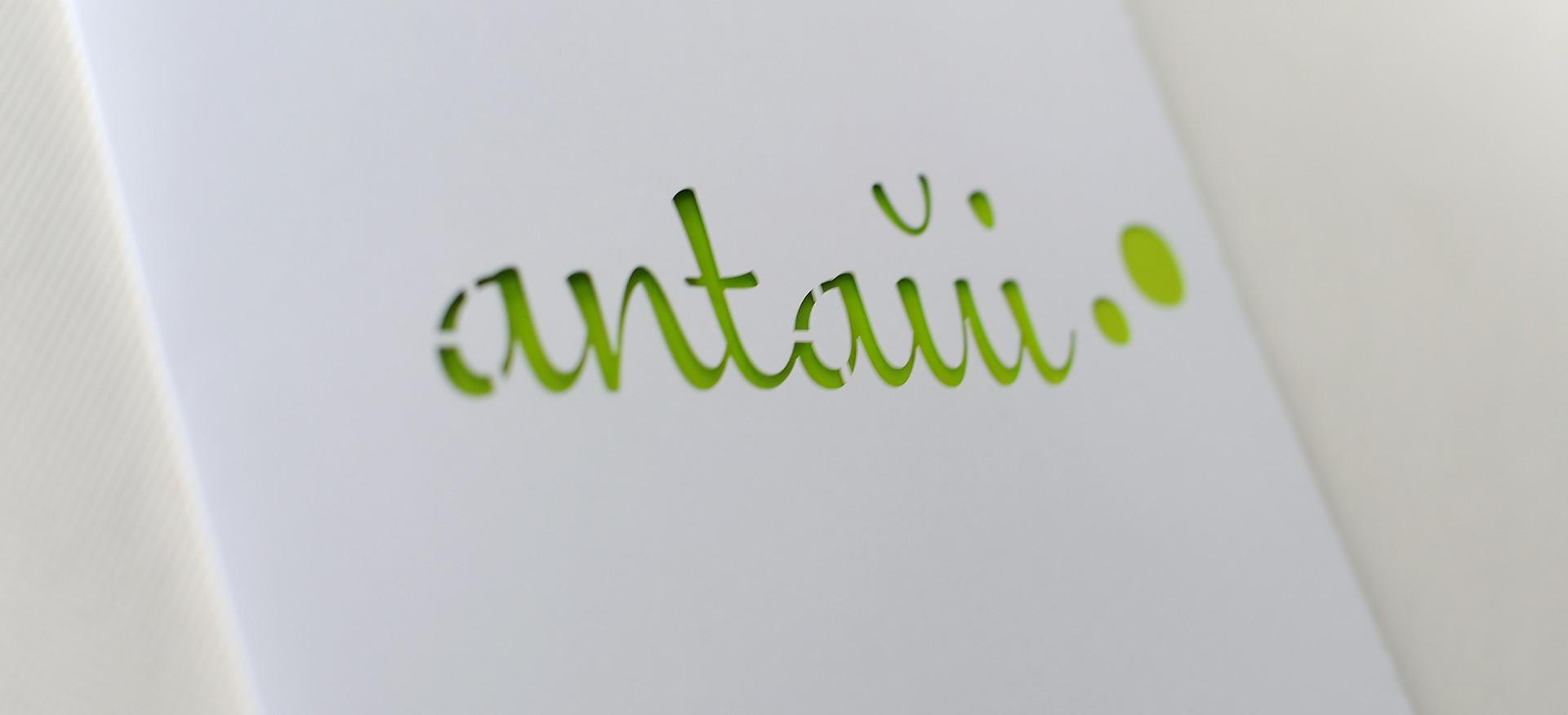 Logo antaui GmbH auf Flyer, gestanzt