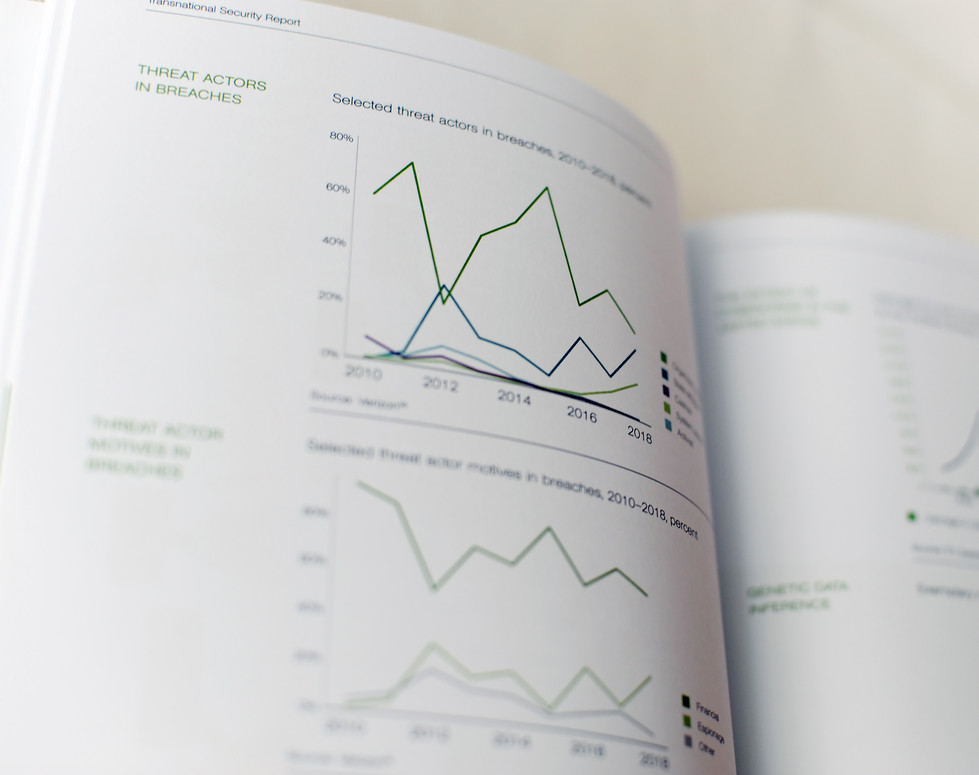 msc, Tansnational Security Report, Innenseiten