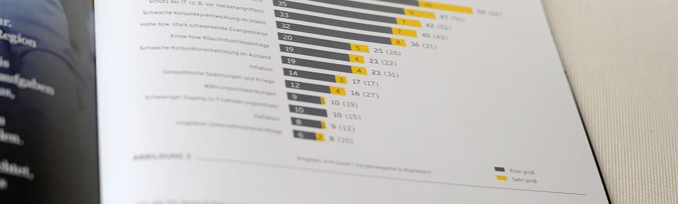 EY, Mittelstandsbarometer 2019, Innenseite