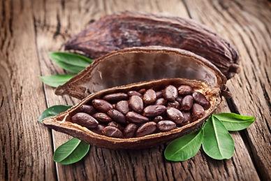 Какао бобы.jpg