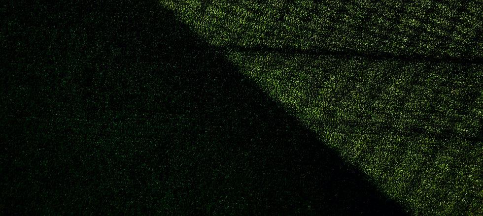 pexels-naveen-ar-4022197_edited.jpg
