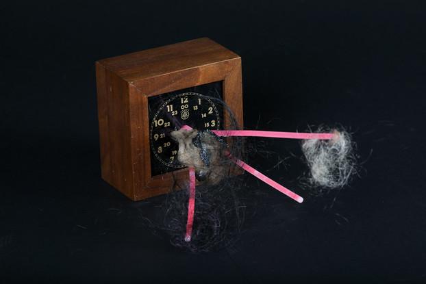 """""""Time Bomb"""""""