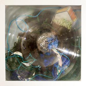 """""""Aquatic"""", 2013"""