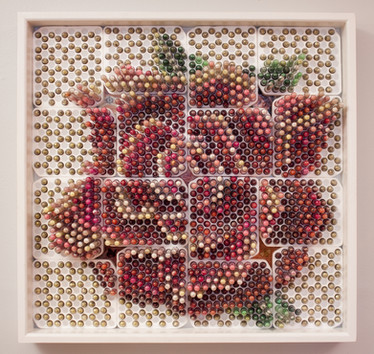 """""""Rose"""", 2017"""