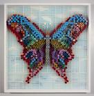 """""""Butterfly"""", 2017"""
