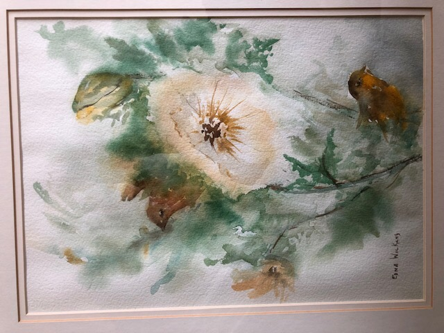 birds & blooms #9801