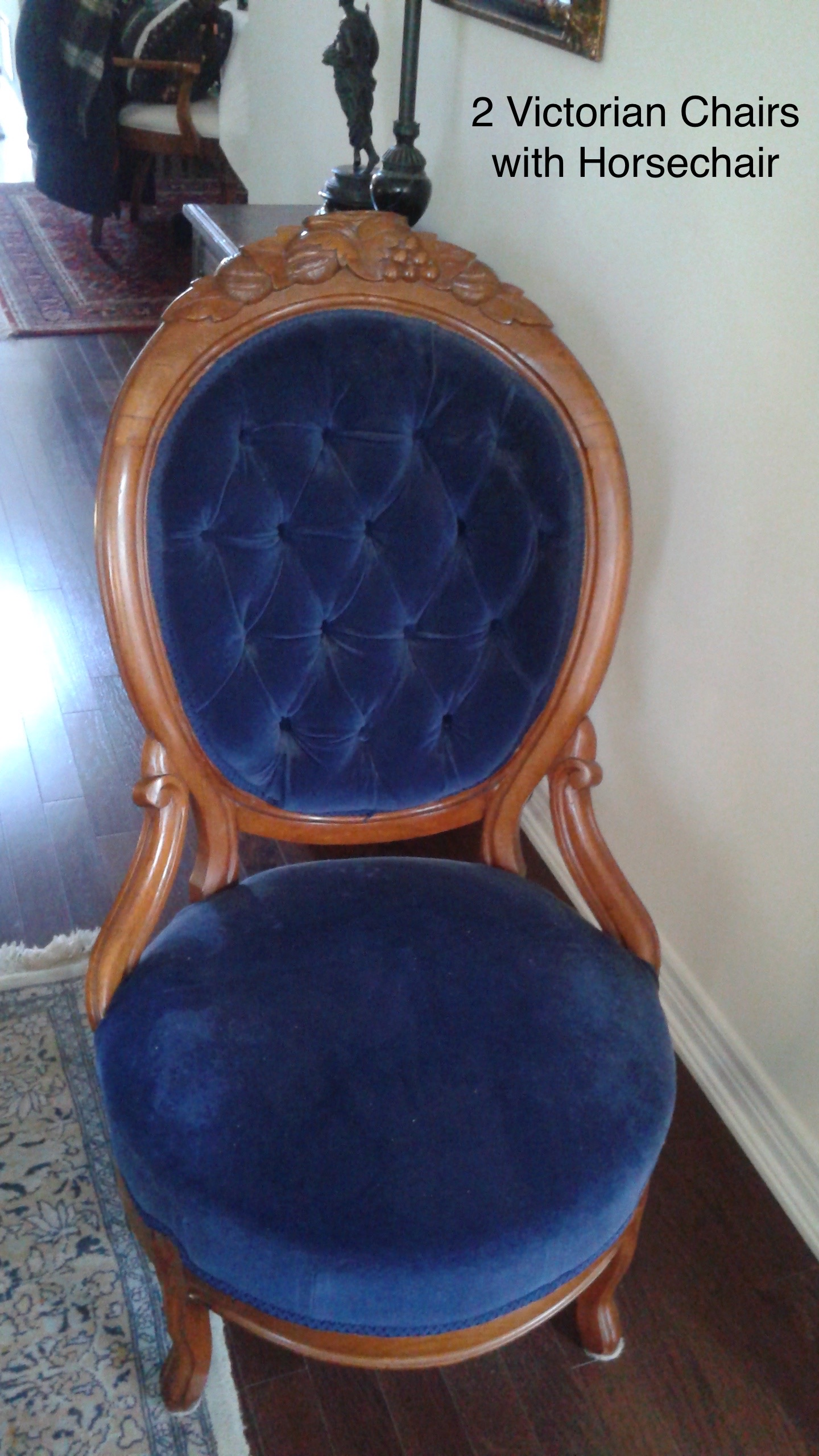 Victorian Chairs With Horsechair