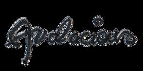 logo audacious sans fond.png