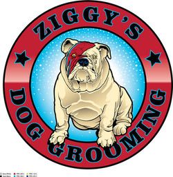 Ziggey's Dog Groming