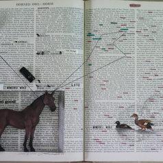 L'object Qui Parle-Horse, 2012