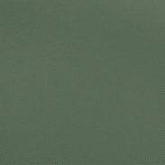 Army Green.jpg